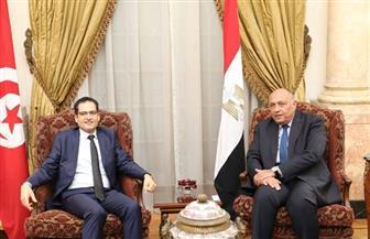  وزيرالخارجية يناقش مع نظيره التونسي مواقف البلدين تجاه التحديات الإقليمية الراهنة | صور