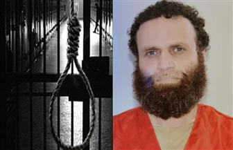استهداف المباني بالإسماعيلية وأنشاص.. أبرز جرائم الإرهابي هشام عشماوي قبل إعدامه