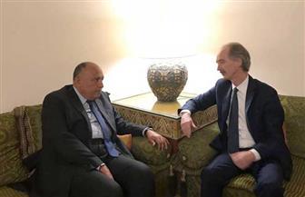 سامح شكرى والمبعوث الأممي الخاص إلى سوريا يبحثان دفع مسار التسوية السياسية للأزمة