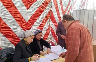 """"""" الوطنية للصحافة"""" تنشر فيديو يوضح سير العملية الانتخابية بـ"""" الأهرام"""""""
