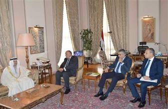 تفاصيل مباحثات وزير الخارجية مع نظيره الإماراتي |صور