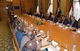 بدء لقاء وزير الخارجية بسفراء الدول الأفريقية المعتمدين بالقاهرة |صور
