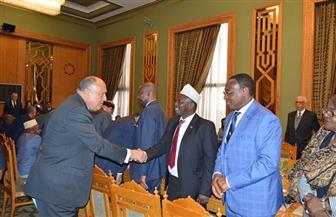تفاصيل لقاء وزير الخارجية بالسفراء الأفارقة في القاهرة