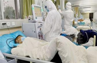 الإمارات : ارتفاع حالات الشفاء من «كورونا» إلى 12 حالة