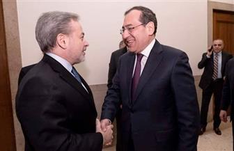 مصر تتفق مع أمريكا على استكمال جلسات الحوار الإستراتيجي في مجال الطاقة