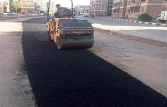 مدير عام طرق أسوان يعلن موافقة وزير التنمية المحلية بدعم ترميم الطرق بالمحافظة