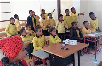 برامج علاجية لتنمية مهارات القراءة والكتابة لتلاميذ القرى النائية في الوادي الجديد  صور