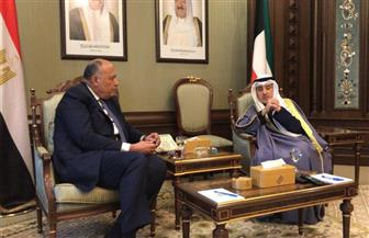 وزير الخارجية يبحث مع نظيره الكويتي أهم القضايا الإقليمية والدولية| صور