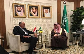 وزير الخارجية يسلم نظيره السعودي رسالة الرئيس السيسي لخادم الحرمين الشريفين | صور