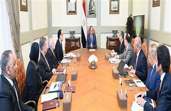 الرئيس السيسي يوجه بالشروع في إطلاق إستراتيجية صناعة السيارات بمصر