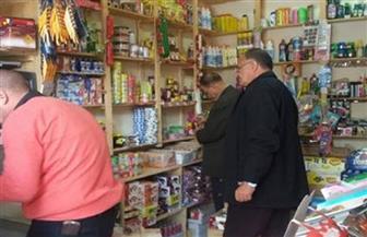 216 محضرا تموينيا بحملات تفتيشية لضبط الأسواق في المنوفية