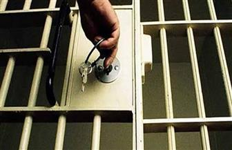إلغاء حبس محمد الغيطي في اتهامه بالتحريض على الفسق والفجور
