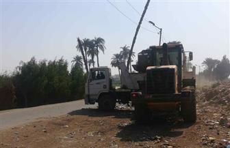 رفع 40 ألف طن قمامة ومخلفات للارتقاء بصحة المواطنين في قنا