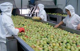 2019 يسجل نموا في صناعة الأغذية بالصين