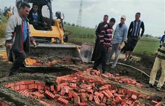 إزالة 16 حالة تعد على الأراضي الزراعية في قطور بالغربية | صور