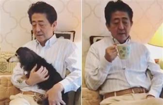 """بعد فيديو """"الكلب وكوب الشاى"""" ..اليابانيون غاضبون من رئيس الوزراء"""
