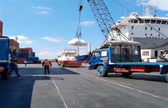 """تداول 18 سفينة.. وشحن 6600 طن """"صودا"""" بمواني بورسعيد"""