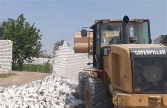 إزالة 31 حالة تعد على أرض زراعية في بني سويف | صور