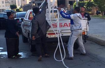 جهاز القاهرة الجديدة يشن حملة لضبط مخالفات غسل السيارات بالشوارع الرئيسية بالمدينة | صور