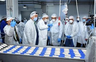 محافظ الشرقية يتفقد المنطقة الصناعية ببلبيس تشجيعا للاستثمار ولمواجهة فيروس كورونا | صور