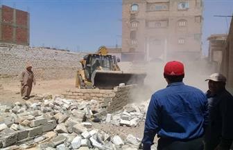 إزالة 117 حالة تعد على الأراضي الزراعية وأملاك في سوهاج| صور