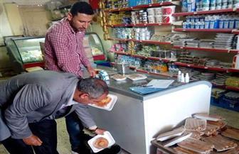 صحة جنوب سيناء تعدم ٣٥٥ كيلو أغذية منتهية الصلاحية | صور