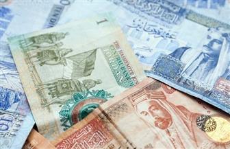 الملكية الأردنية: لدينا سيولة نقدية تكفي حتى نهاية يونيو.. وسنطلب إعفاءات ضريبية من الحكومة