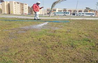 غمر المسطحات الخضراء بـ 6 أكتوبر الجديدة لمنع تجمعات المواطنين بأعياد الربيع| صور