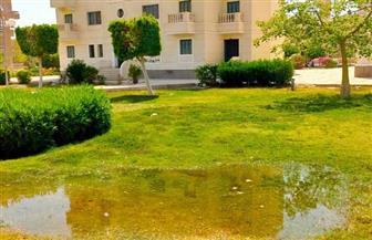 رئيس جهاز أسيوط الجديدة: غلق الحدائق والمسطحات الخضراء وغمرها بالمياه  صور