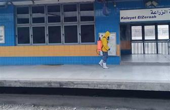 وزارة النقل تواصل اتخاذ كافة الإجراءات الاحترازية لمواجهة فيروس كورونا | صور