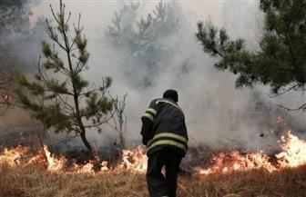 أوكرانيا ترفع أعداد رجال الإطفاء في منطقة تشيرنوبل إلى 1400 مع استمرار الحرائق