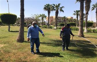 غمر الحدائق بالمياه في برج العرب لمنع تجمعات المواطنين | صور
