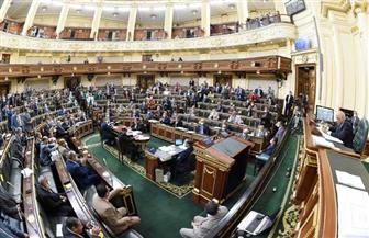 """مجلس النواب يوافق على تعديلات """"الصحة النفسية"""" فى مجموعه"""
