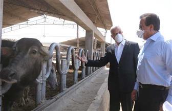 وزير التعليم العالي والبحث العلمي ورئيس جامعة المنوفية يتفقدان مزرعة طوخ طنبشا |صور