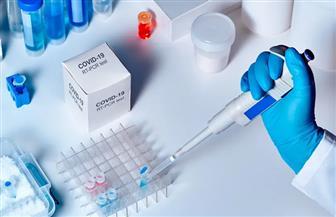 بدء إجراء اختبارات فيروس كورونا مجانية للمسافرين العائدين إلى ألمانيا