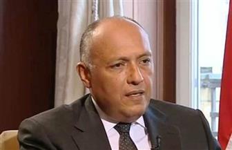 وزير الخارجية يوضح أهداف مصر من اللجوء لمجلس الأمن فى أزمة سد النهضة