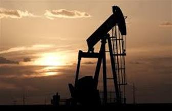 """""""الذهب الأسود"""" لا يجد مشترين.. انتكاسة في أسواق النفط والكبار يبحثون تخفيضا جديدا للإنتاج"""