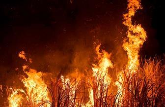"""السيطرة على حريق في 6 أطنان """"مخلفات القصب"""" بنجع حمادي"""