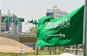 السعودية تفوز بعضوية لجنتين بالمجلس الاقتصادي والاجتماعي للأمم المتحدة