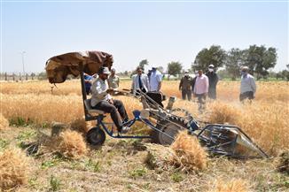 جامعة سوهاج تشارك في حصاد القمح | صور