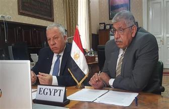 مصر تشارك في الاجتماع الافتراضى الأول للجنة الفرعية للنقل التابعة لمفوضية الاتحاد الإفريقي | صور