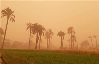 انقطاع الكهرباء وخدمات الاتصالات عن عدد من المناطق بأسيوط بسبب العاصفة الترابية | صور
