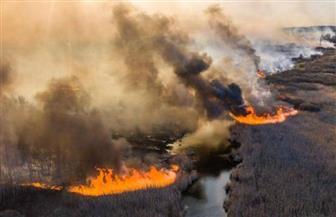 استمرار حرائق غابات تشرنوبل في الذكرى الـ34 للكارثة النووية
