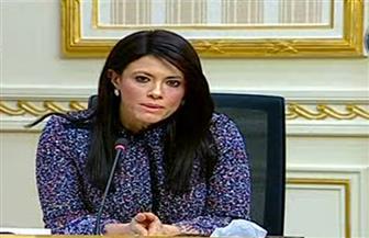 وزيرة التعاون الدولي تبحث دعم المشروعات التنموية بمحافظة الوادي الجديد