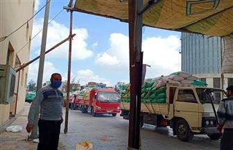 ارتفاع الكميات الموردة من القمح المحلي للصوامع والشون والمطاحن بكفرالشيخ|صور
