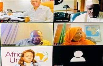 فيديو كونفرانس لأول اجتماع لمكتب الصندوق الإفريقي لمواجهة كورونا | صور