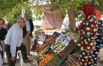 منافذ جديدة لبيع الخضر والفاكهة واللحوم البلدية بالوادى الجديد | صور