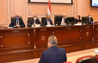 """""""تعليم النواب"""" تناقش جهود الدولة لمواجهة """"كورونا"""" الإثنين المقبل"""