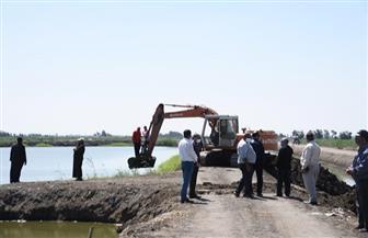 إزالة 19 مزرعة سمكية مخالفة على مساحة 95 فدانا جنوب بورسعيد