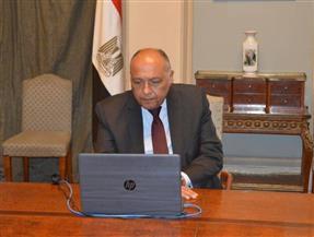 شكري يؤكد موقف مصر الراسخ من القضية الفلسطينية خلال الدورة غير العادية لمجلس جامعة الدول العربية
